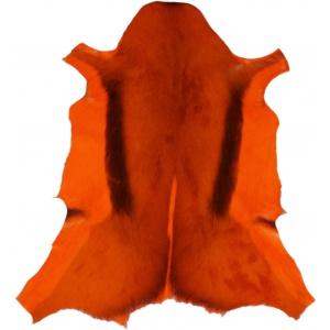 springbok orange