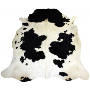 vache noire et blanche claire
