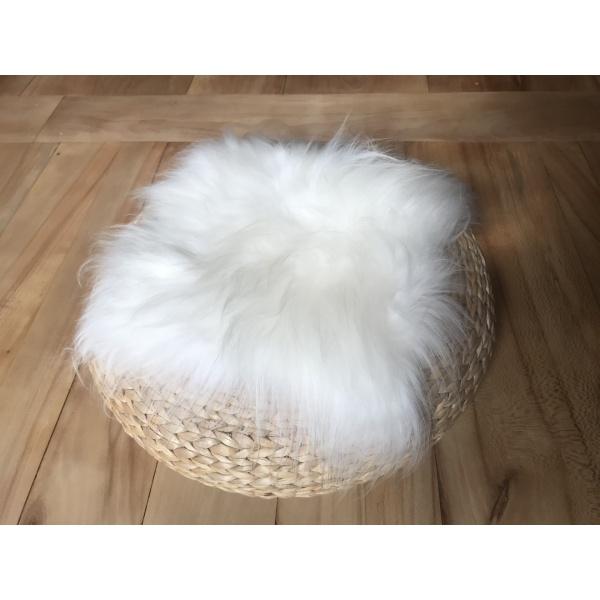 galette mouton poil long