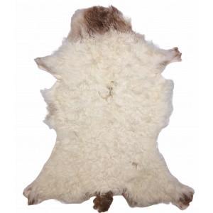 peau agneau du bearn